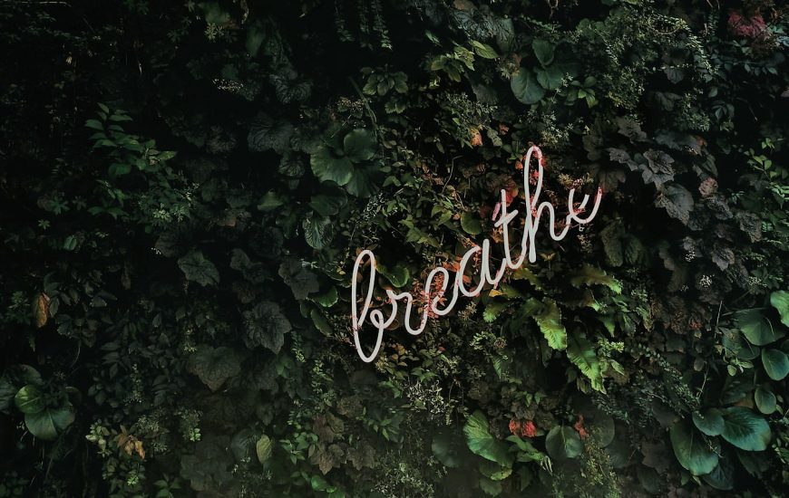 Breathe, Time to Think courses like Press Press encourage you to advance your deep skills, like breathing and listening to reenergise the way you work.